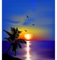 Sunset on sea with palms and birds vector image