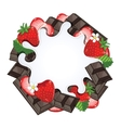 Yogurt splash isolated on chocolate and strawberry vector image