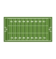 field football american sport vector image