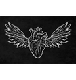 Anatomical heart with wings vector image