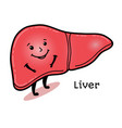 cute and funny human liver character vector image