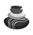 spa stones cartoon vector image