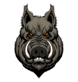 Angry boar head vector image