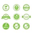 Eco Vintage Labels Bio template set vector image