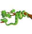cute snake cartoon vector image vector image