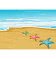 Three colorful starfishes in the beach vector image