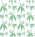 Eucalyptus Seamless pattern vector image