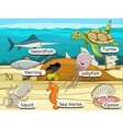 Underwater animals and fish with names vector image