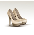 Woman Fashion Shoes on High Heels vector image