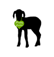 Lamb on white vector image vector image