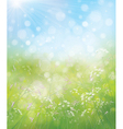 spring flowers sky vector image vector image