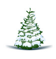 christmas holiday blue snowy tree vector image