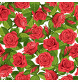 red rose seamless background vector image