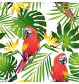 tropic parrots vector image vector image