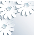 Stylish grey wallpaper with 3d white chamomile vector image vector image
