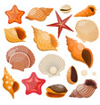 Shells And Sea Stars Icon Set vector image