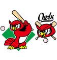 baseball owl mascot vector image vector image