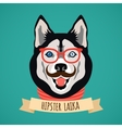 Hipster dog portrait vector image