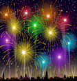 Fireworks at night vector image