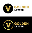 Letter V number 5 logo icon design template vector image