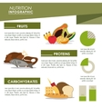 Infographic icon Nutrition design graphic vector image