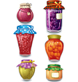 homemade preserved vector image vector image
