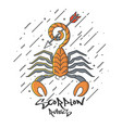 flat designed scorpion vector image