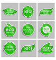 green sticker eco friendly bio pure organic vector image