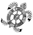 hand drawn doodle turtle tortoise with vector image