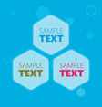 hexagonal text frames vector image