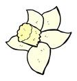 comic cartoon daffodil vector image