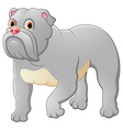 Cartoon guard dog house vector image