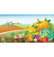 Landscape with a group of vegetables vector image