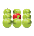 Red apple among green apples vector image