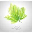 Shiny green striped maple leaf vector image