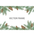 Frame with Pine Tree Brunches and Cones vector image
