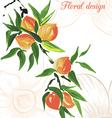 peach design card vector image