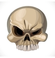 Scary skull isolated on a white background vector image vector image