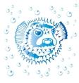 Balloonfish vector image vector image