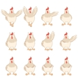 Set of white chicken flat icons vector image