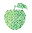Green apple isolated vector image