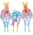 rainbow zebra vector image vector image