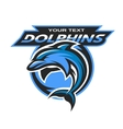 Dolphin logo emblem for a sport team vector image