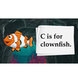 Letter C is for clownfish vector image