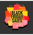 Black Friday sales vector image