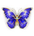 Sapphire Butterfly vector image