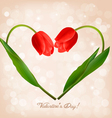 Valentines day background with two flowers vector image