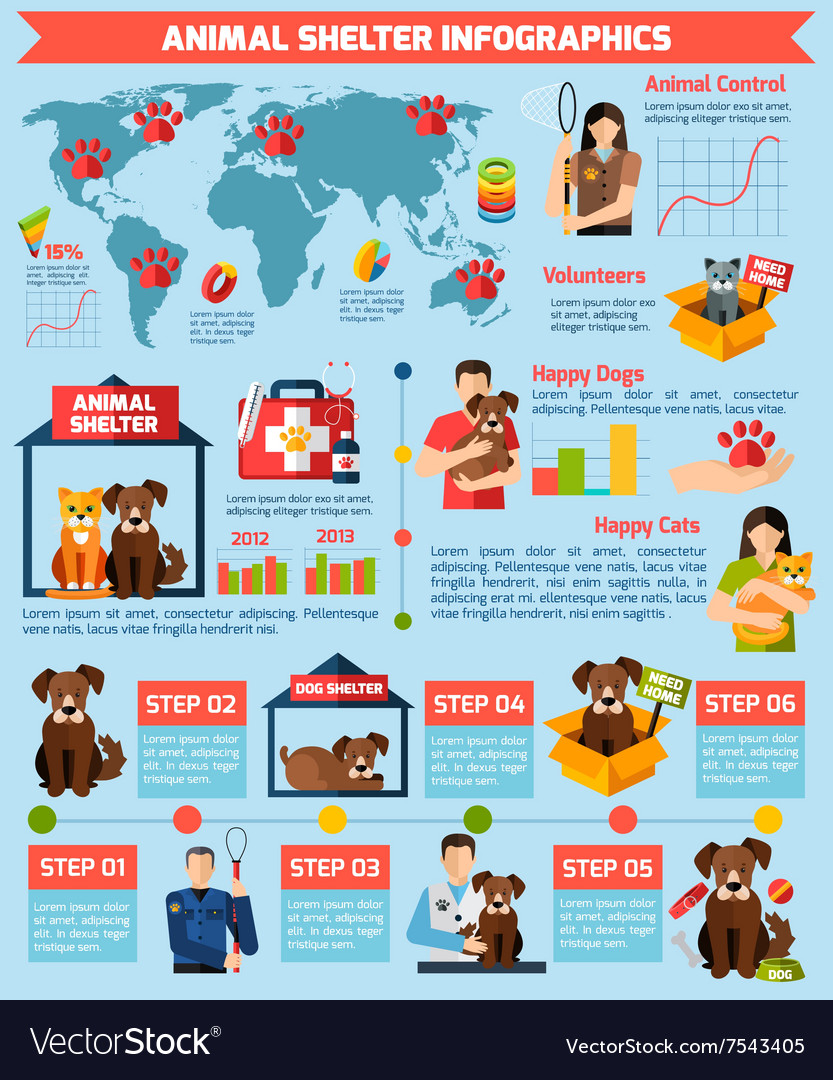 Animal shelter infographics vector