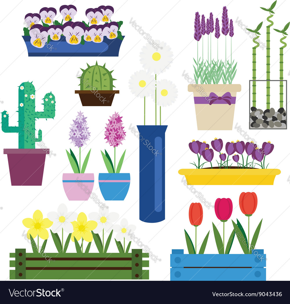 Indoor and garden flowers in pots set vector