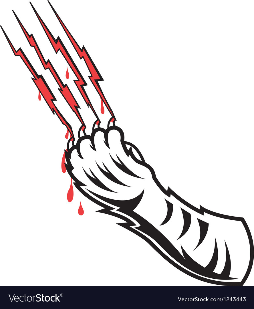 Tigers claw vector